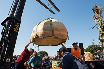 2017 Weigh-off pumpkin entry being lifted to the official scales
