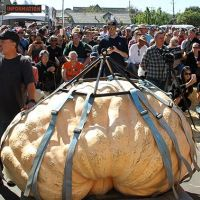 2018 Pumpkin Weigh-Off winning pumpkin